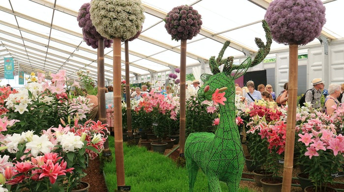 The Hampton Court Palace Flower Show gives you the perfect reason to go to London and enjoy your stay in one of the city's best homes.