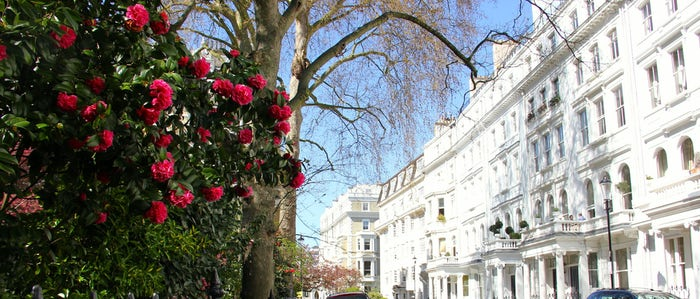White stucco houses and gardens: Kensington is one of our most popular neighbourhoods with customers looking for a luxury London vacation rental